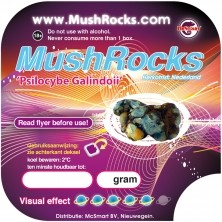 Mushrocks 20 gram
